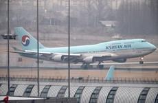 Các hãng hàng không Hàn Quốc ngừng thêm nhiều chuyến bay