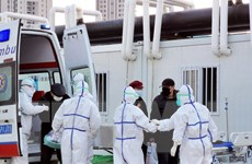 Chuyên gia Trung Quốc: Virus corona chủ yếu tấn công phổi người