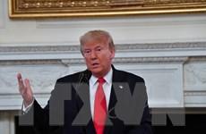 Tổng thống Mỹ hy vọng người dân Afghanistan sẽ nắm bắt cơ hội hòa bình