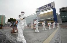 Hàn Quốc thông tin về trường hợp người Việt nhiễm bệnh COVID-19