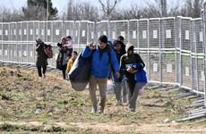 Đụng độ mới giữa cảnh sát và người di cư ở biên giới Thổ Nhĩ Kỳ-Hy Lạp