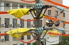 Nhiều giải pháp đảm bảo cung ứng điện mùa khô và cả năm 2020