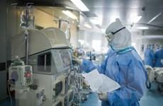 Hàng trăm triệu người trên thế giới bị phong tỏa do dịch COVID-19