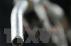 Trung Quốc: Xuất khẩu xăng tăng gần 32% trong 2 tháng đầu năm