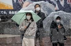 10 triệu hộ gia đình ở Nhật Bản sẽ được hỗ trợ tiền do giảm thu nhập
