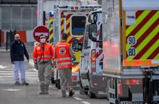 Pháp xác nhận tổng cộng 7.560 trường hợp tử vong vì COVID-19