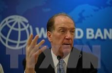 Chủ tịch WB lạc quan về tiến triển của đề xuất hoãn thanh toán nợ