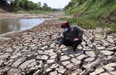 Đề nghị hỗ trợ 515 tỷ đồng phòng chống, khắc phục hạn hán, ngập mặn