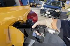 Giá dầu trên thế giới giảm đáng kể trong phiên ngày 14/4