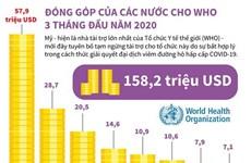 [Infographics] Đóng góp của các nước cho WHO 3 tháng đầu năm