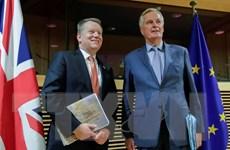 Brexit: Liệu Anh có kéo dài giai đoạn chuyển tiếp sang sau 2020?
