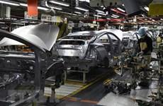 Sản lượng ôtô toàn cầu có thể sẽ giảm gần 20 triệu chiếc trong năm nay