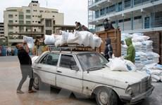 LHQ kêu gọi hành động để tránh một khủng hoảng lương thực