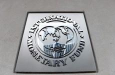 IMF và các cơ chế tài chính khu vực nhất trí phối hợp đối phó COVID-19