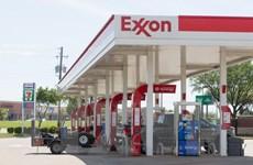 Cú sốc giá dầu: Tương lai khó khăn của doanh nghiệp dầu đá phiến Mỹ