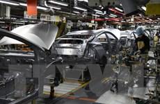 Toyota nối lại hoạt động sản xuất tại Bắc Mỹ vào tháng tới