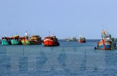 Bình Thuận khẩn trương hỗ trợ tàu cá bị đâm chìm trên biển