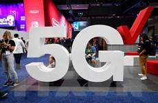 Nhật Bản lo ngại sự nổi lên của Trung Quốc về mạng 5G, cáp ngầm biển