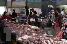 Giá lợn hơi trên thị trường tiến sát mốc 100.000 đồng mỗi kilogam