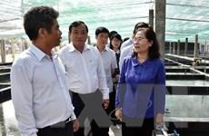TP Hồ Chí Minh tăng cường hỗ trợ thúc đẩy nông nghiệp đô thị