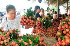 Trái cây đặc sản được chuyển về tiêu thụ nhiều tại TP Hồ Chí Minh