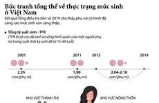 [Infographics] Bức tranh tổng thể về thực trạng mức sinh ở Việt Nam