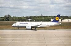 Ngành hàng không châu Âu bắt đầu hồi phục khi biên giới mở cửa lại
