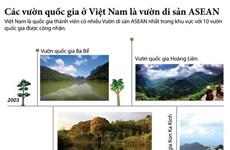 [Infographics] Các vườn quốc gia ở Việt Nam là vườn di sản ASEAN
