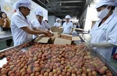 Ngành nông nghiệp thích ứng linh hoạt theo tín hiệu thị trường