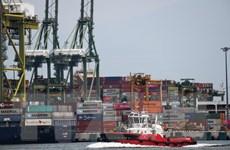 JCER: 5 nền kinh tế hàng đầu ASEAN, Ấn Độ có thể lún sâu vào suy thoái