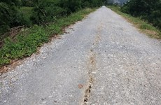 Xuất hiện nhiều vết nứt trên đê tả sông Đáy thuộc tỉnh Hà Nam