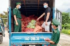 Quảng Ninh: Bắt giữ 1,5 tấn chân gà sơ chế xuất lậu sang biên giới