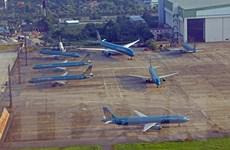 Xem xét lập thêm hãng hàng không khi thị trường hàng không phục hồi