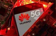 EC: Các thành viên EU nhanh chóng đa dạng hóa nhà cung cấp thiết bị 5G
