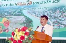 Tỉnh Sơn La phấn đấu xuất khẩu 75.000 tấn nhãn trong năm nay