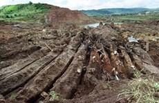 Phát hiện hàm lượng thủy ngân độc hại trong cá tại khu vực Amazon