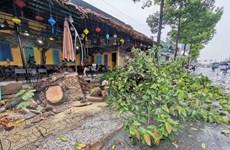 Cần Thơ: Hỗ trợ các hộ dân bị ảnh hưởng do mưa to và gió lốc
