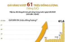 [Infographics] Giá vàng SJC vượt 61 triệu đồng mỗi lượng