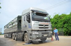 Phát hiện và xử lý 1.500 xe chở quá trọng tải trong tháng Bảy