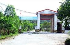 Nghệ An: Sớm giải quyết về môi trường ở trang trại lợn Đại Thành Lộc