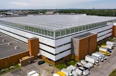Ra mắt nhà kính lớn nhất thế giới trên mái nhà tại Canada