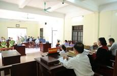 Quảng Ninh: Đối tượng hủy hoại rừng nhận án 18 tháng tù giam