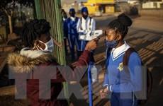Châu Phi ghi nhận ca mắc COVID-19 vượt con số 1,29 triệu