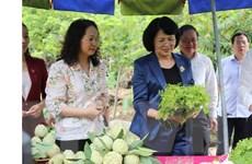 Phó Chủ tịch nước Đặng Thị Ngọc Thịnh thăm, làm việc ở huyện Chi Lăng