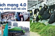 Hệ thống trang trại Vinamilk tăng trưởng về quy mô, hiệu quả hoạt động