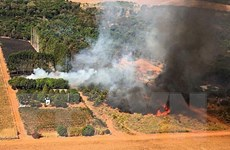 Những đám cháy 'rình rập' khu bảo tồn báo đốm lớn nhất thế giới
