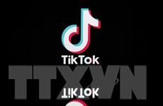 TikTok bị chỉ trích ở Australia do chậm gỡ video có nội dung bạo lực