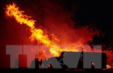 Mỹ: Tất cả rừng quốc gia ở California đã đóng cửa vì cháy