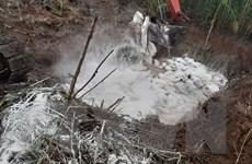 Cà Mau khẩn trương xử lý các ổ dịch tả lợn châu Phi