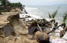 Quảng Nam: Bãi tắm Cửa Đại sạt lở nghiêm trọng do bão số 5